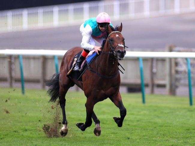 Enable's half-brother posts awesome win