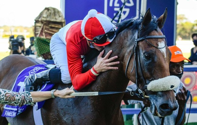 Rainbow Bridge is South Africa's Horse Of The Year